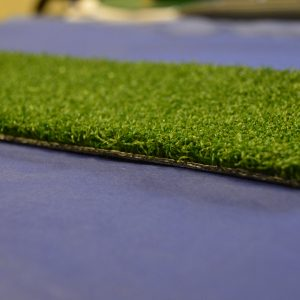 adventure grass (10)